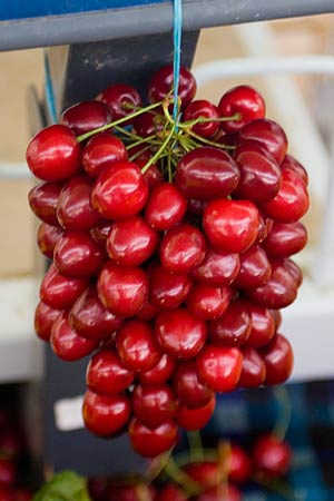 Cherries or grapes?