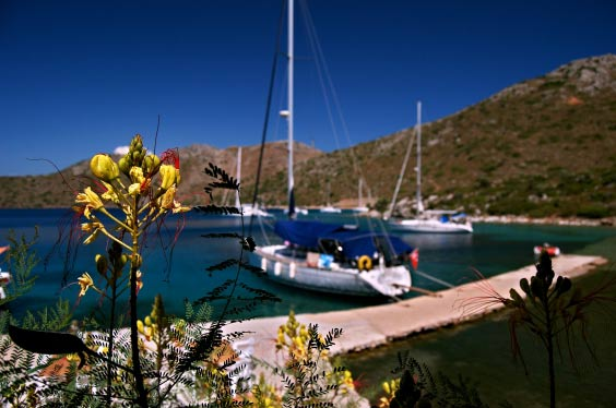 The view from our luncheon spot – Esper is one of the far distance yachts; Candice swam back from here after lunch, the show off.