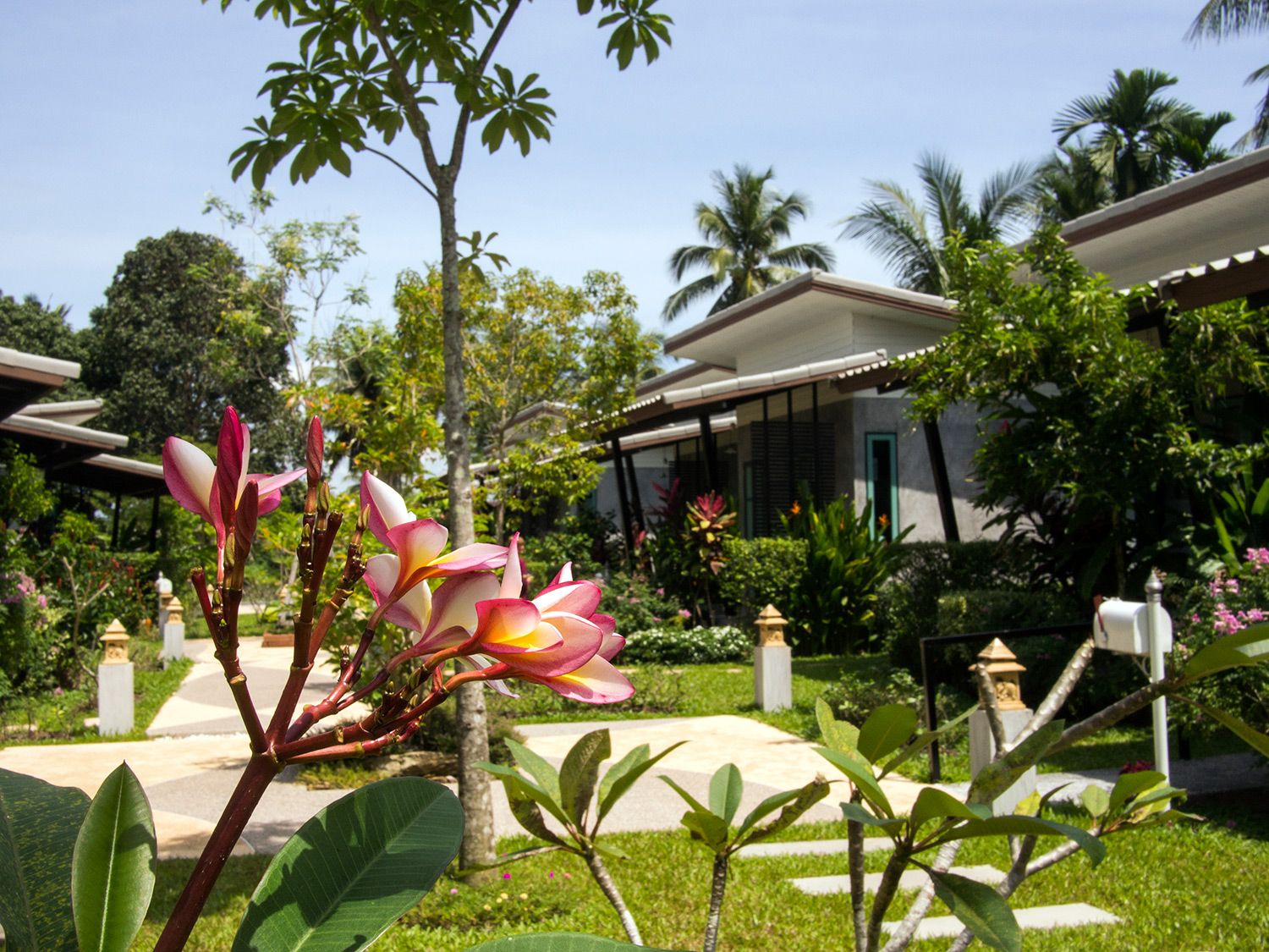 Gleam Resort, Satun, Thailand, Garden with tropical flowers