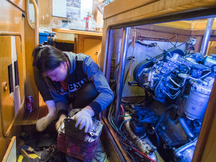 Mey cleaning the transmission and engine