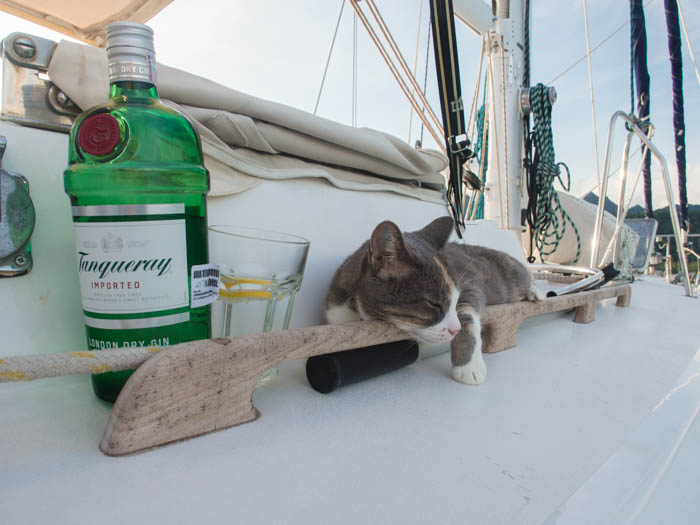 Millie relaxes with a G&T