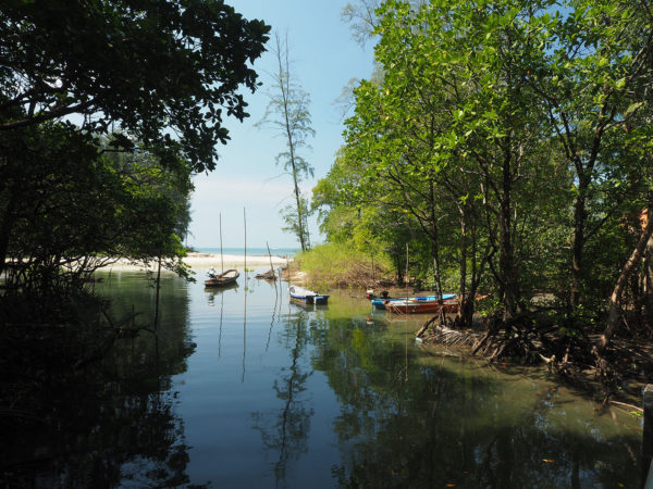 The creek on Koh Chang