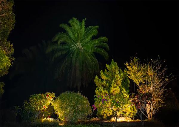 Sabah Tea and hot springs